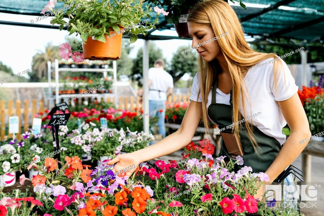 Stock Photo: Female worker in a garden center caring for flowers.