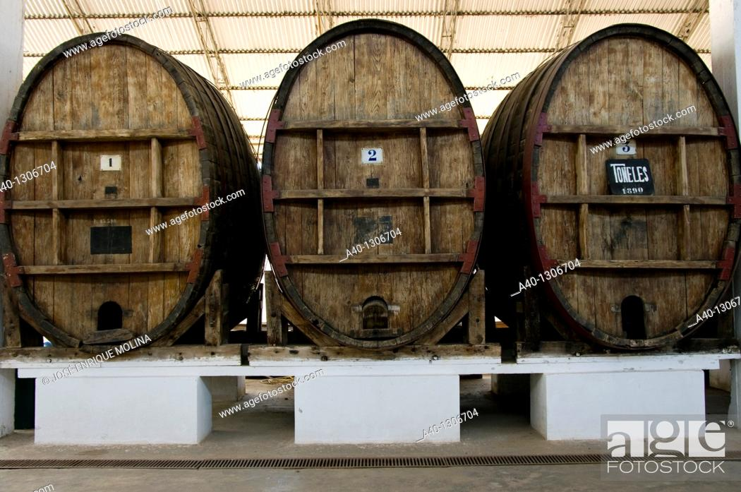 Stock Photo: Perú. Ica. Tacama wineries. Old wine barrels.
