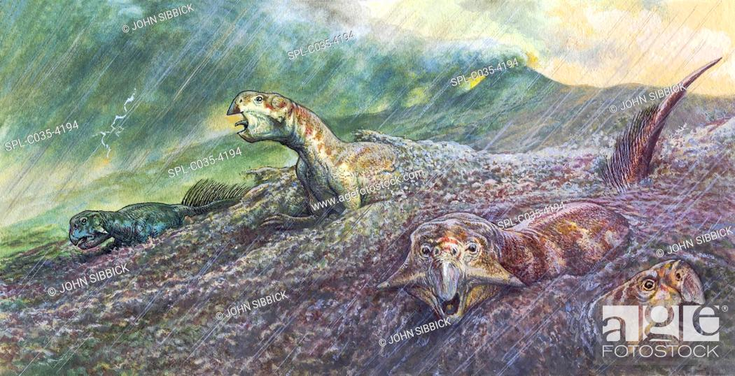 Stock Photo: Psittacosaurus dinosaurs trapped in mudslide triggered by a volcanic eruption, illustration. Events such as this led to the formation of fossils that were.