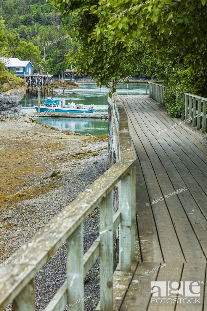 Imagen: Wooden boardwalk in Halibut Cove on the Kenai Peninsula across Kachemak Bay from Homer Alaska.