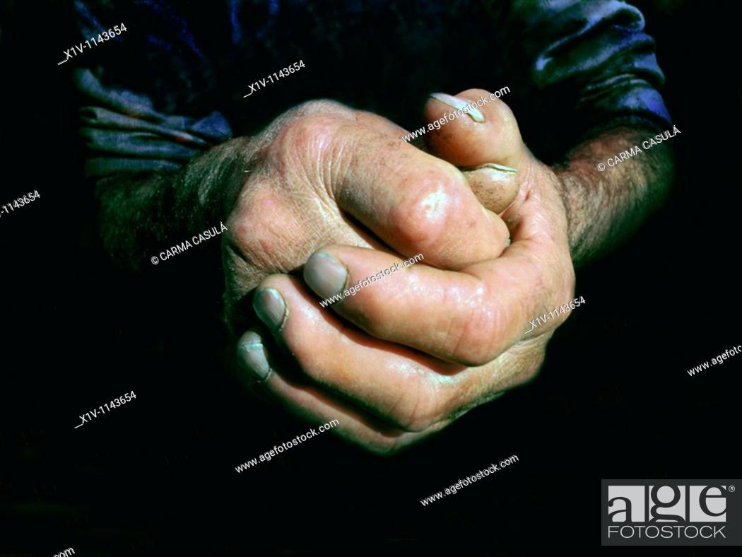 Stock Photo: rough hands of an older man.