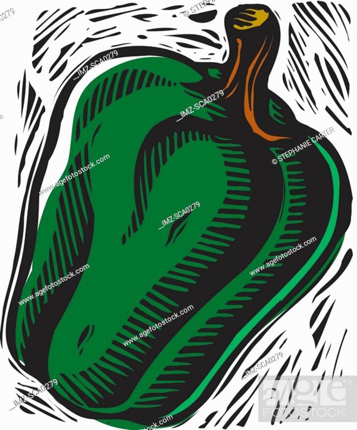 Stock Photo: Green bell pepper.