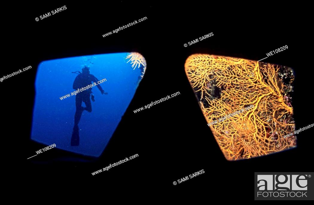 Stock Photo: Looking through a diving mask of a diver at a diver and coral.
