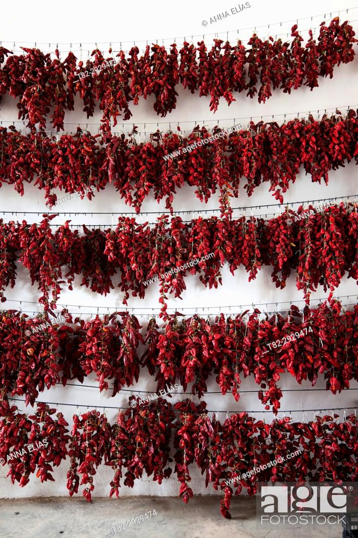Stock Photo: Many red peppers in a dryer. Cordoba, Andalusia, Spain.