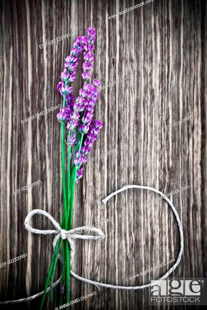 Stock Photo: Lavender flower on wooden background.