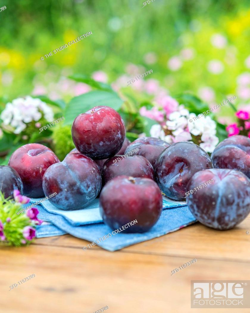 Stock Photo: Plums with flowers and leaves on a garden table.