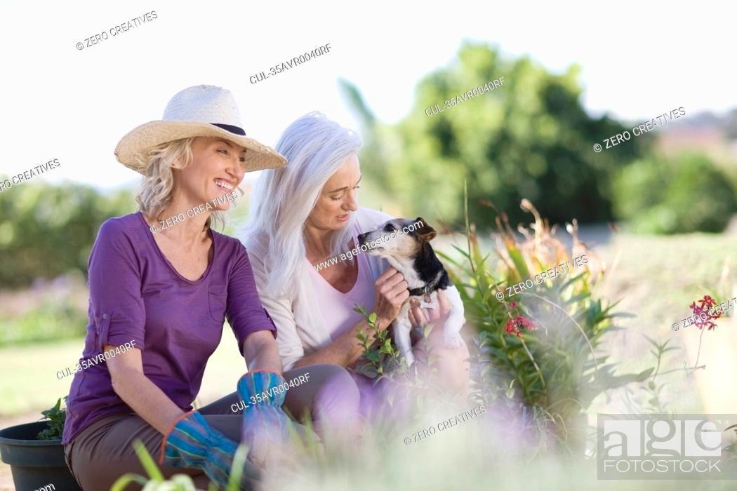 Stock Photo: Older women examining garden together.