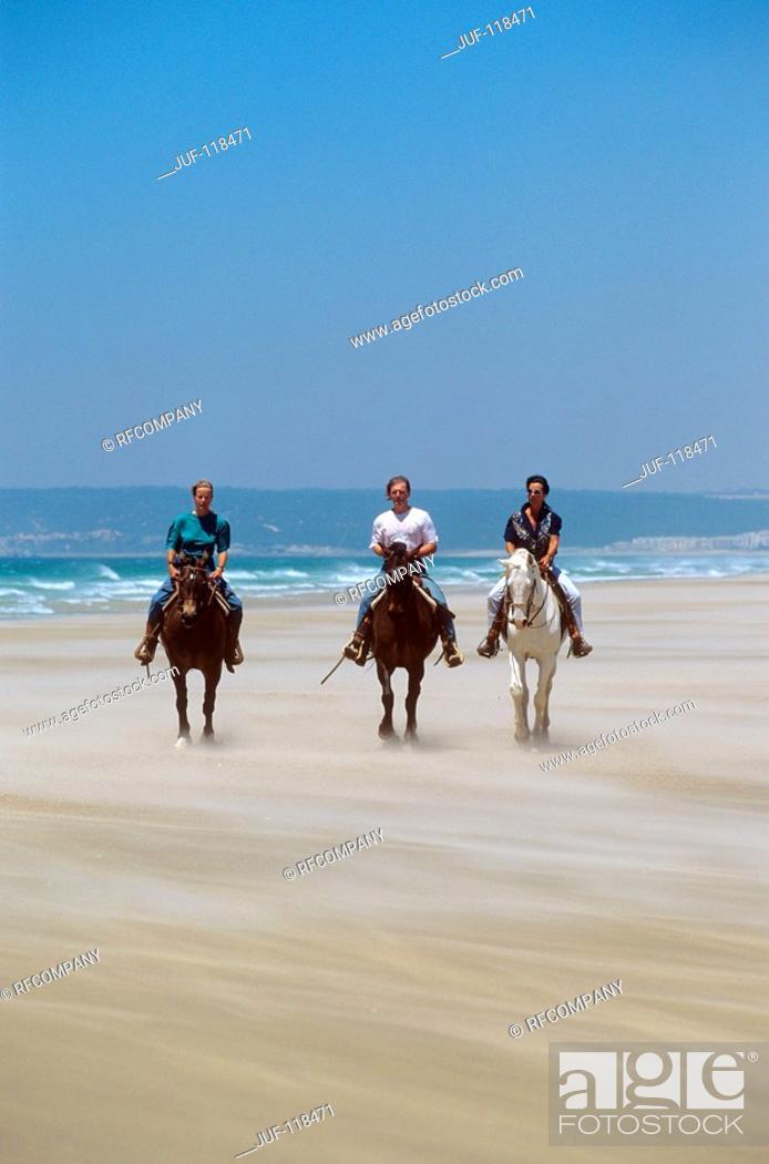 Stock Photo: three Arabian horses with riders at the beach.