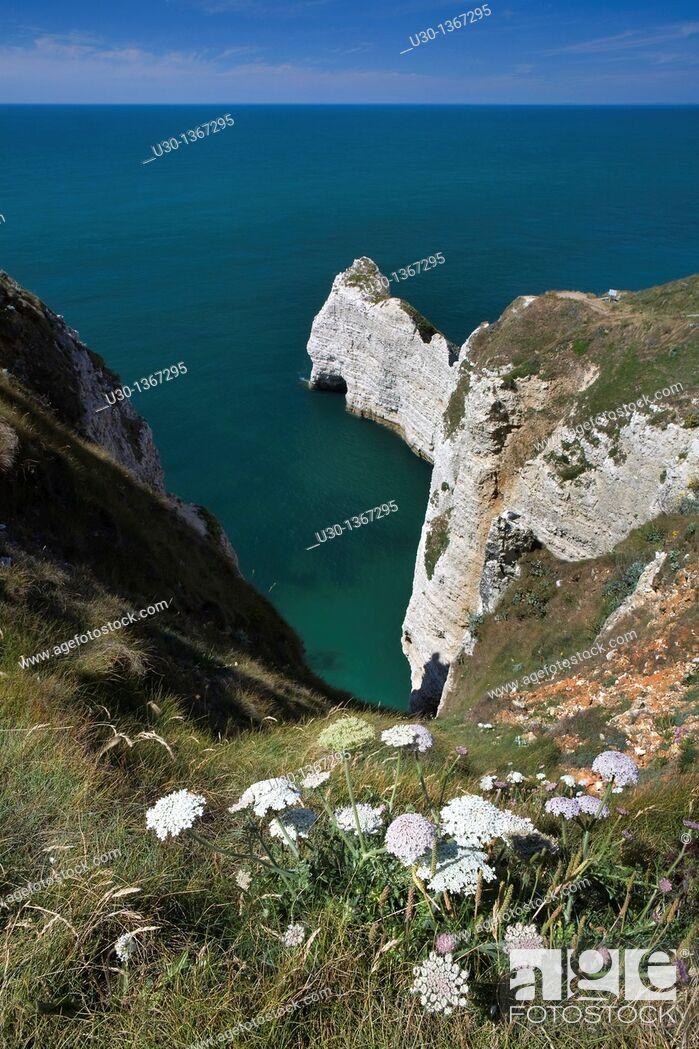Stock Photo: High cliff of Etretat, in Alabaster Coast  Seine-Maritime department, Haute-Normandie region  France.