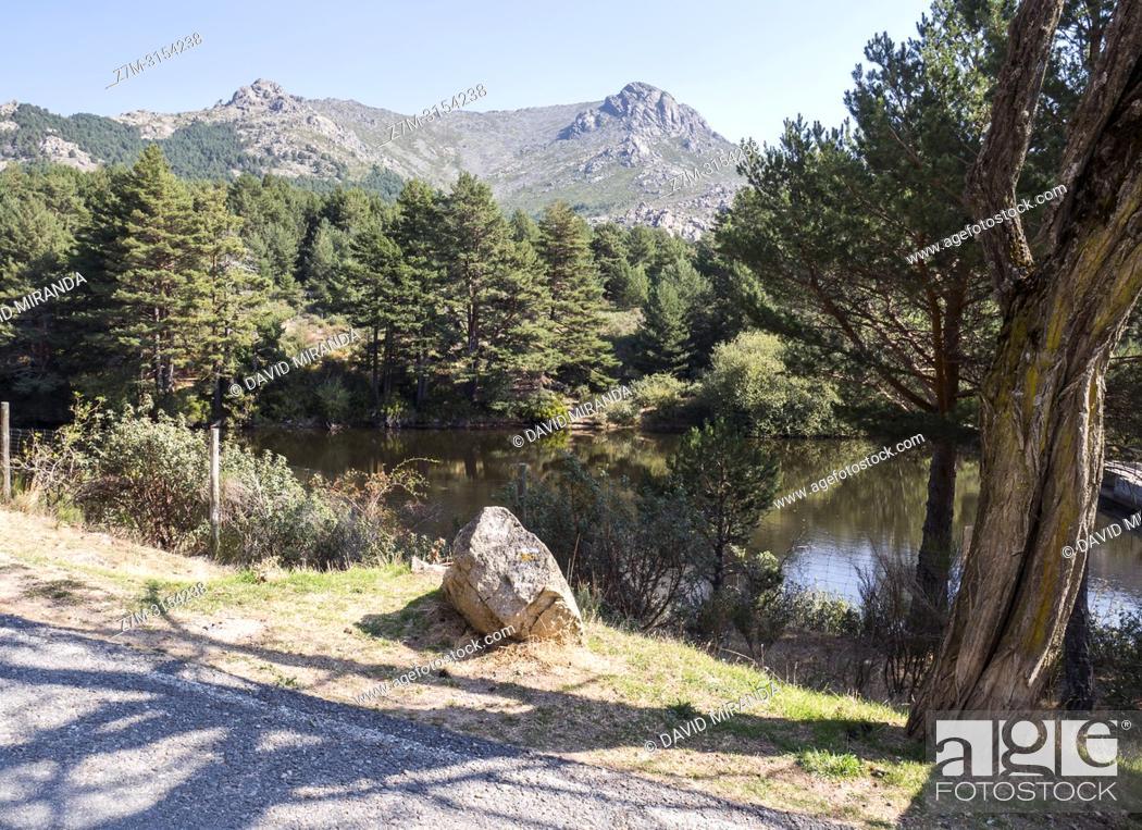 Stock Photo: Pico de la Maliciosa (parque nacional de la Sierra de Guadarrama) desde el Valle de la Barranca. Madrid. España.