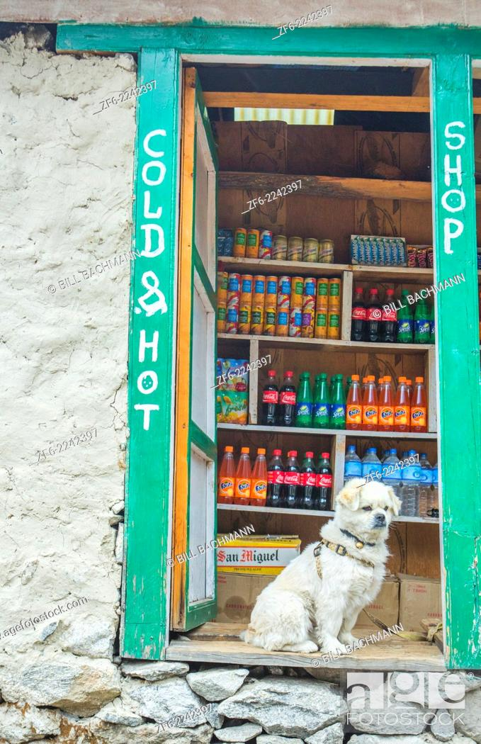 Stock Photo: Nepal A guard dog standing watch at a small store in Soso Kharka Solukhumbu, remote, Mt Everest, Himalayas.