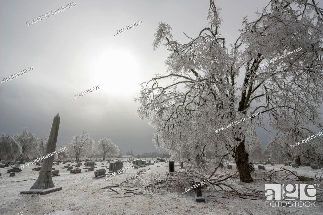 Stock Photo: Ice storm devistates the Springdale Arkansas Cemetery and other areas of northwest Arkansas January 27-28, 2009. Many areas recieved over 1 inch ice.