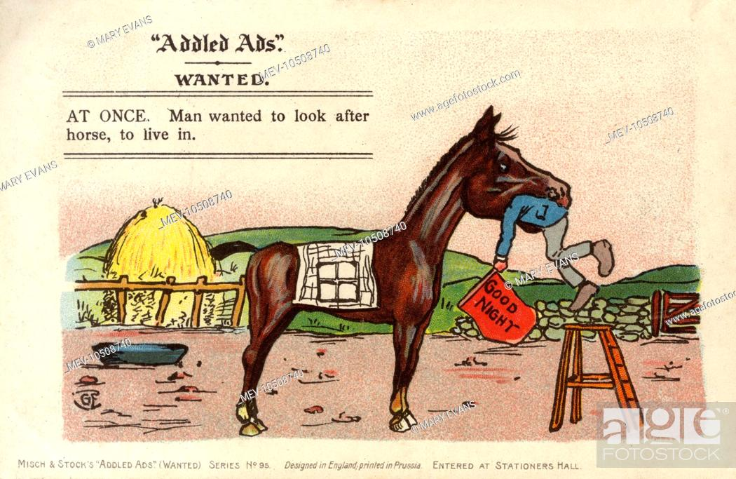 Stock Photo: Addled Ads - WANTED: AT ONCE. Man wanted to look after horse, to live in.