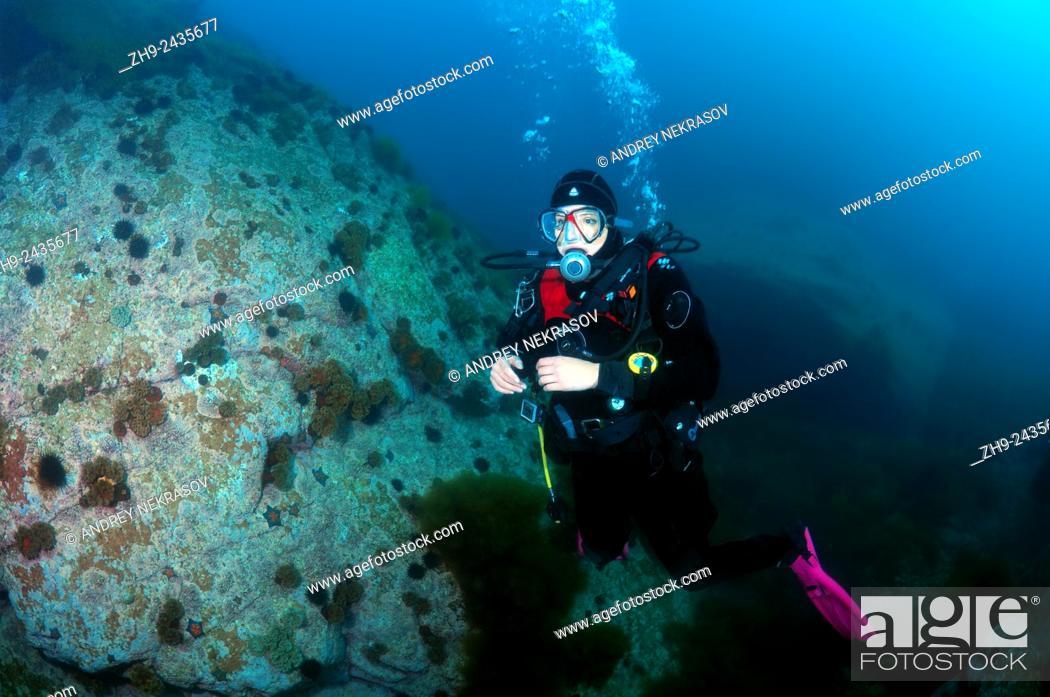 Stock Photo: Diver, Sea of Japan, Far East, Primorsky Krai, Russian Federation.
