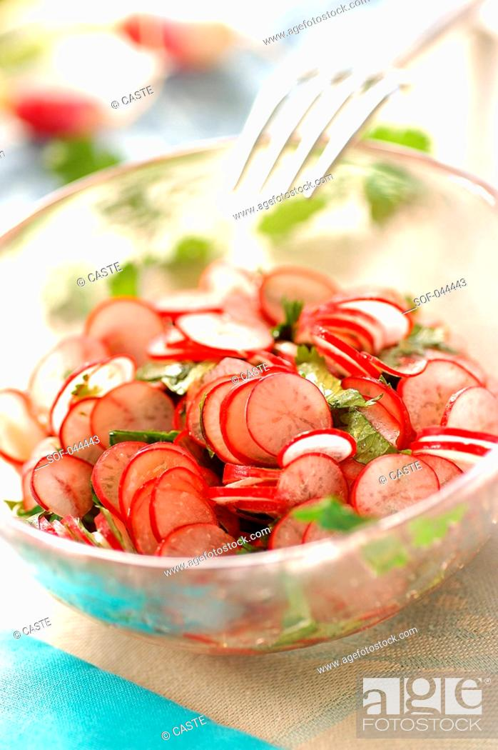 Stock Photo: Radish and coriander salad.