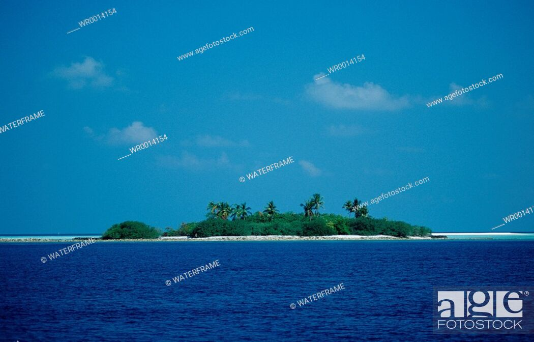 Imagen: Maldive Islands, Indian Ocean, Maldives Island.
