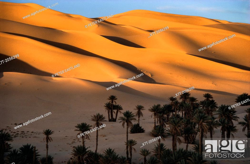 Stock Photo: Sand dunes of the Grand Erg Occidental, at sunset, at the oaisis of Taghit in North west Algeria.