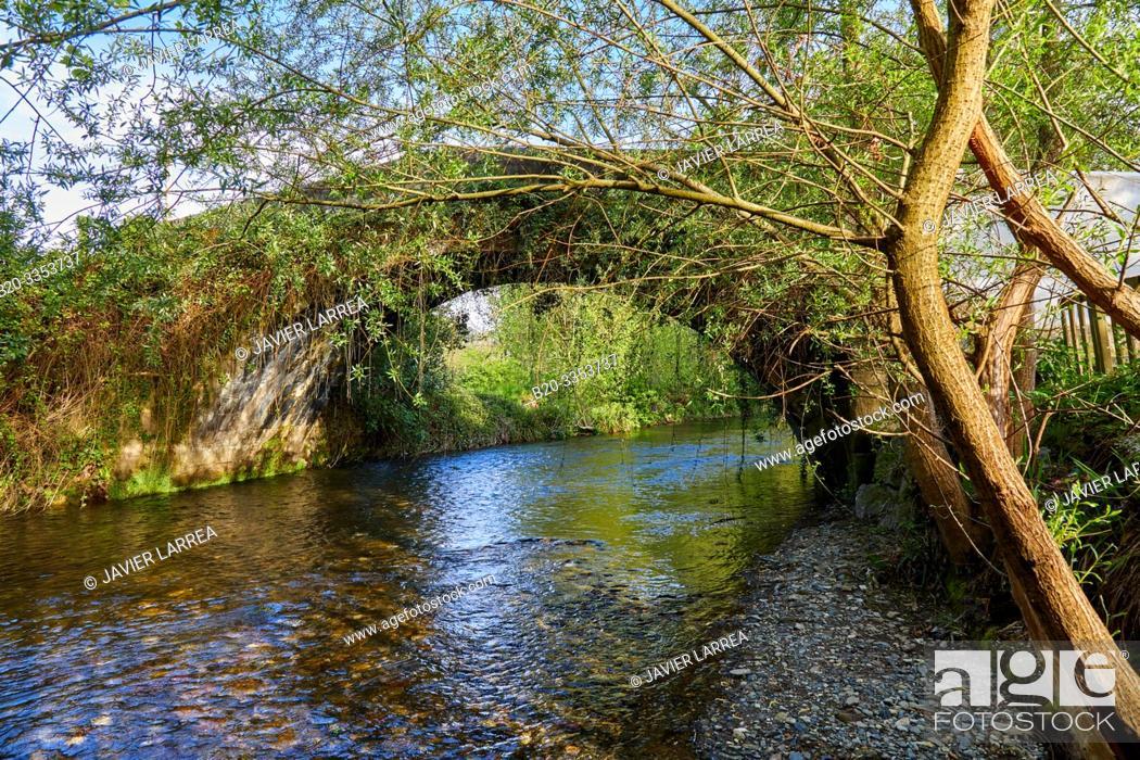 Stock Photo: Oiartzun River, Oyarzun, Gipuzkoa, Basque Country, Spain.