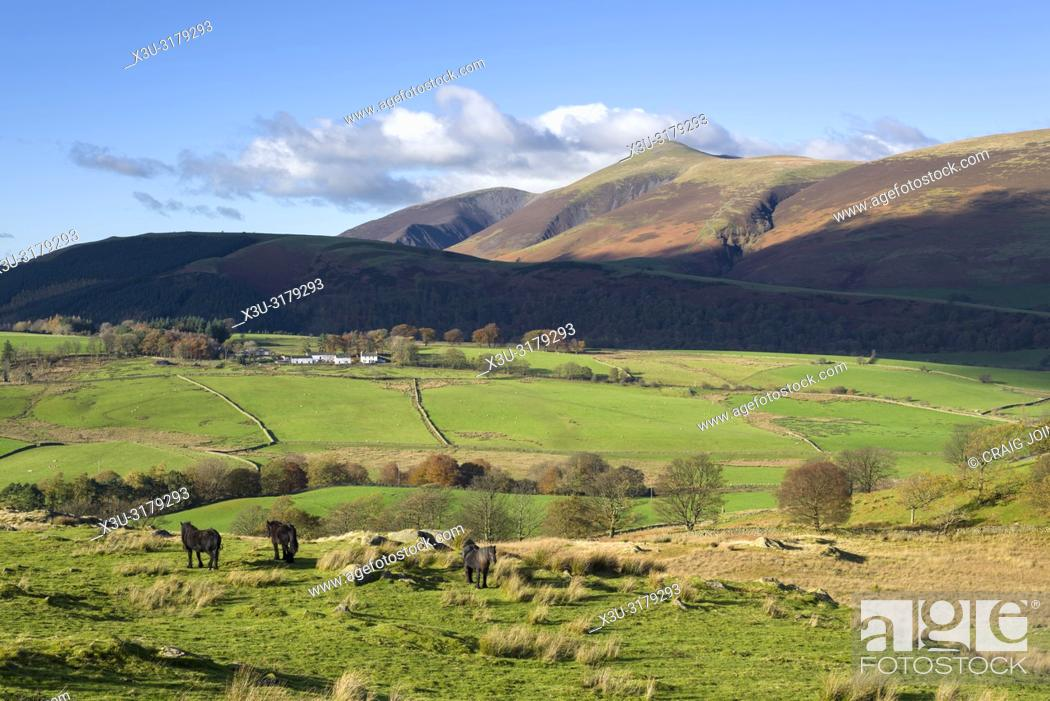 Stock Photo: Goosewell Farm viewed from Low Rigg with Latrigg and the Skiddaw range beyond in the English Lake District National Park, Cumbria, England.