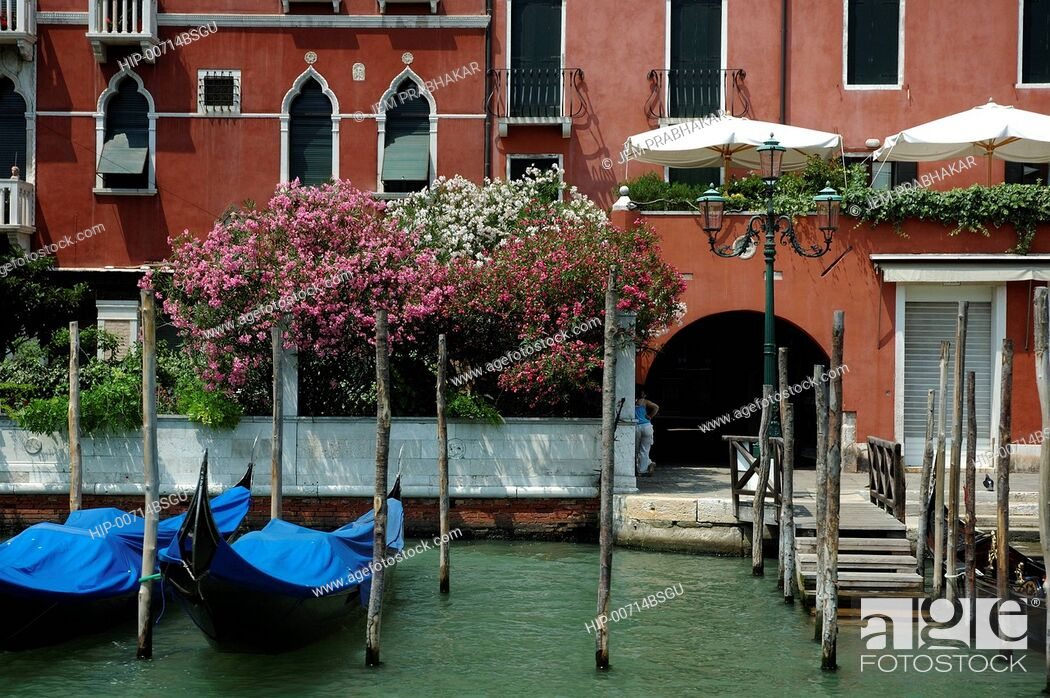 Imagen: GRAND CANAL IN VENICE, ITALY.