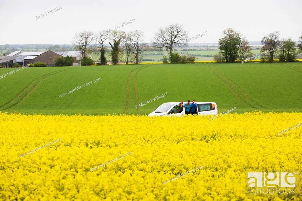 Imagen: A drive through the English countryside which is covered in vibrant yellow Rapeseed flowers; Cotswolds, England.