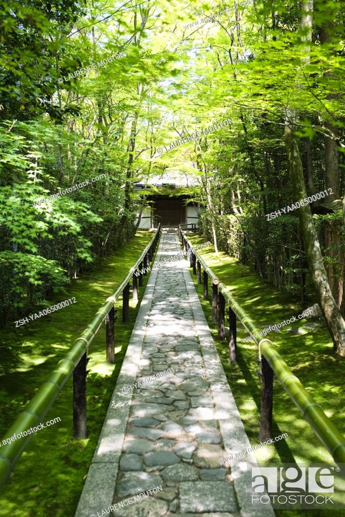 Stock Photo: Stone path in forest, building in background.