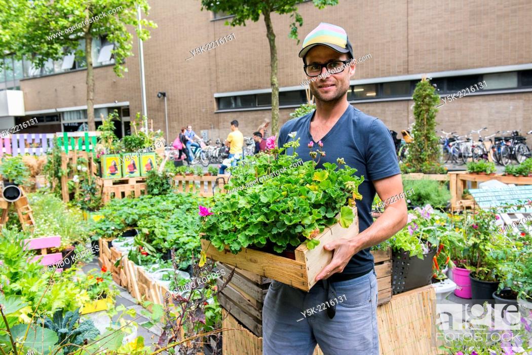 Stock Photo: Tilburg, Netherlands. Bram is an Urban Gardener, maintaining his urban kitchen garden down town Tilburg.
