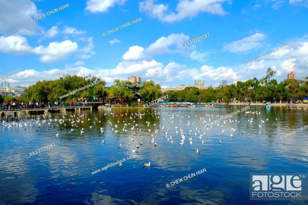 Stock Photo: View of Cuihu Lake in Kunming, Yunnan, China.