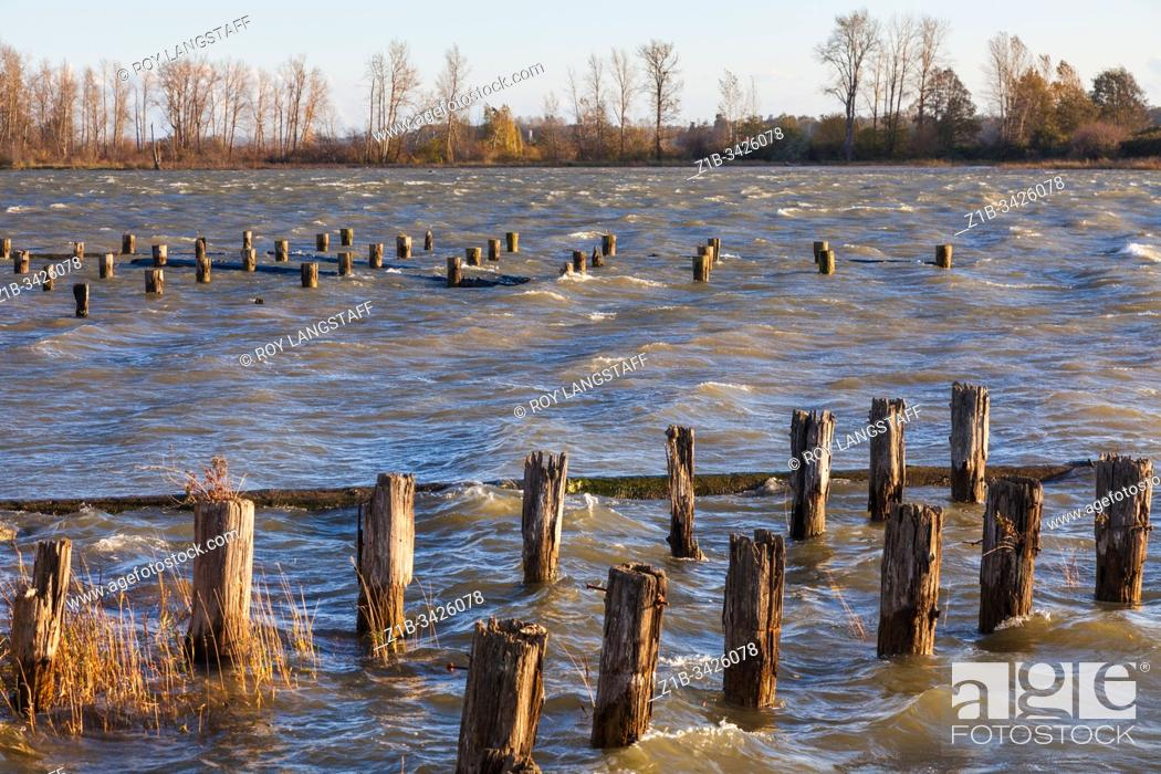 Imagen: Very strong gale force winds whipping up waves on a normally sheltered inlet in Steveston British Columbia Canada.