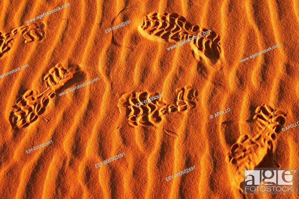Stock Photo: Foot prints in the desert sand, Sahara desert, Africa.