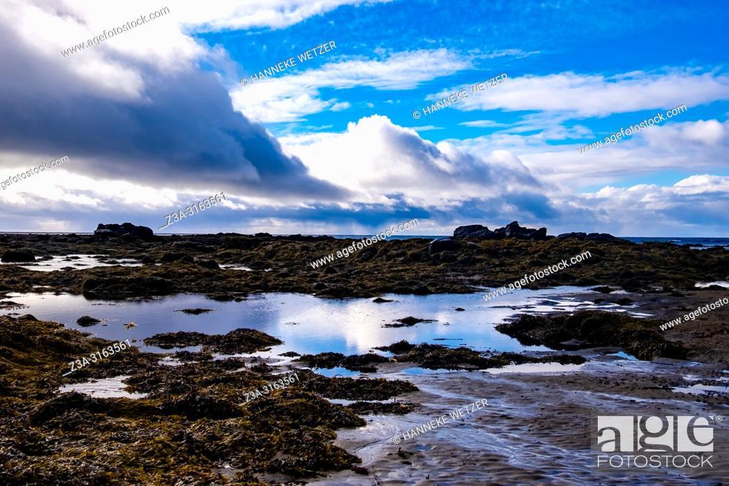 Imagen: Seal Beach of Ytri Tunga, Snaefellsnes peninsula, Iceland.