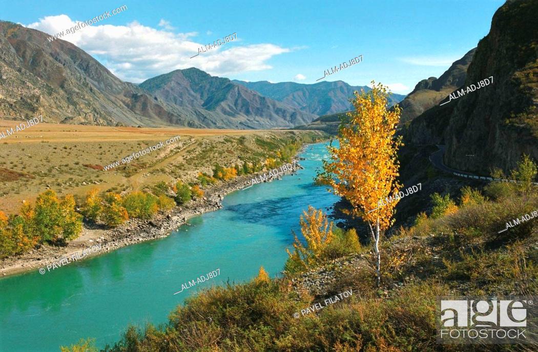 Photo de stock: The Katun river s valley in autumn Altai Russia.