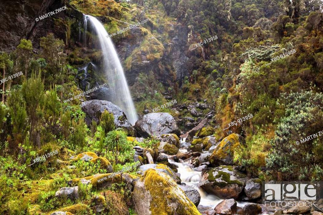 Stock Photo: Waterfall in the Mobuku Valley, Rwenzori Africa, East Africa, Uganda, Rwenzori, January 2009.
