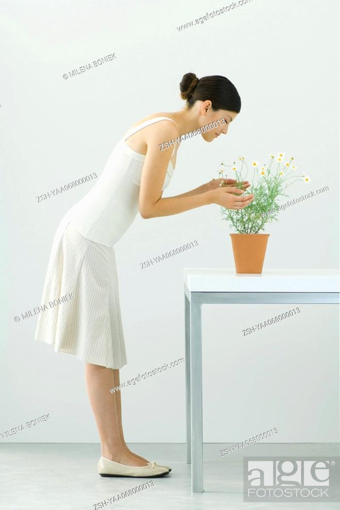 Stock Photo: Woman smelling potted chamomile plant, eyes closed, side view.