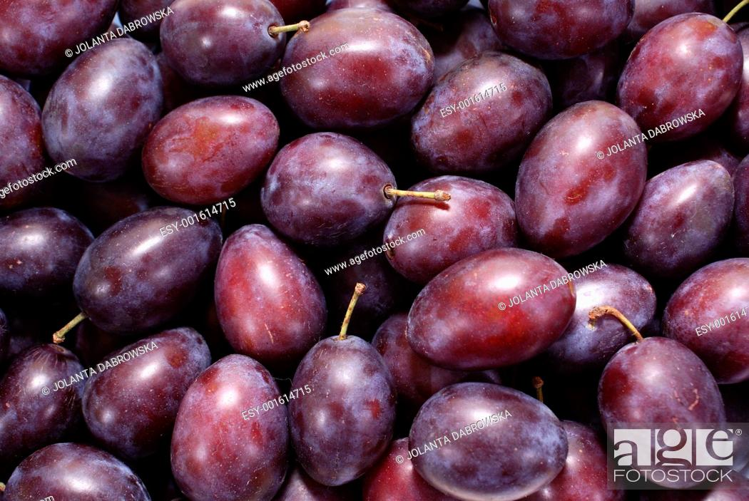 Stock Photo: plum.