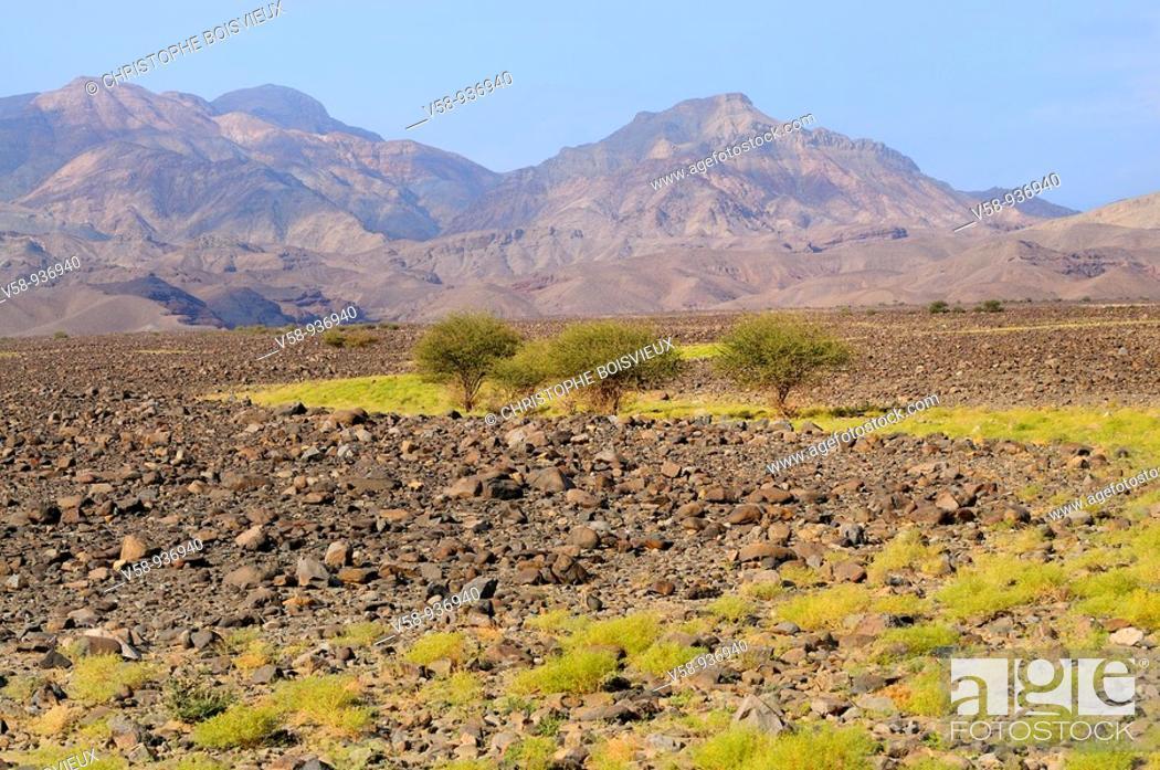 Stock Photo: Lava fields. Danakil depression. Afar province. Ethiopia.