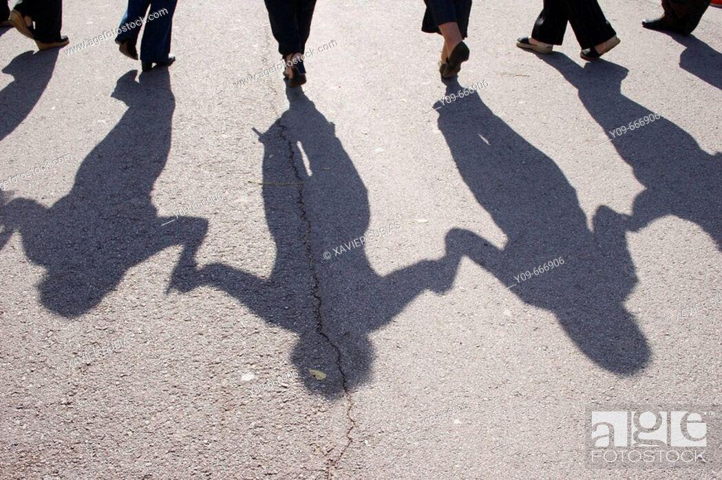 Stock Photo: Sardana shadow.