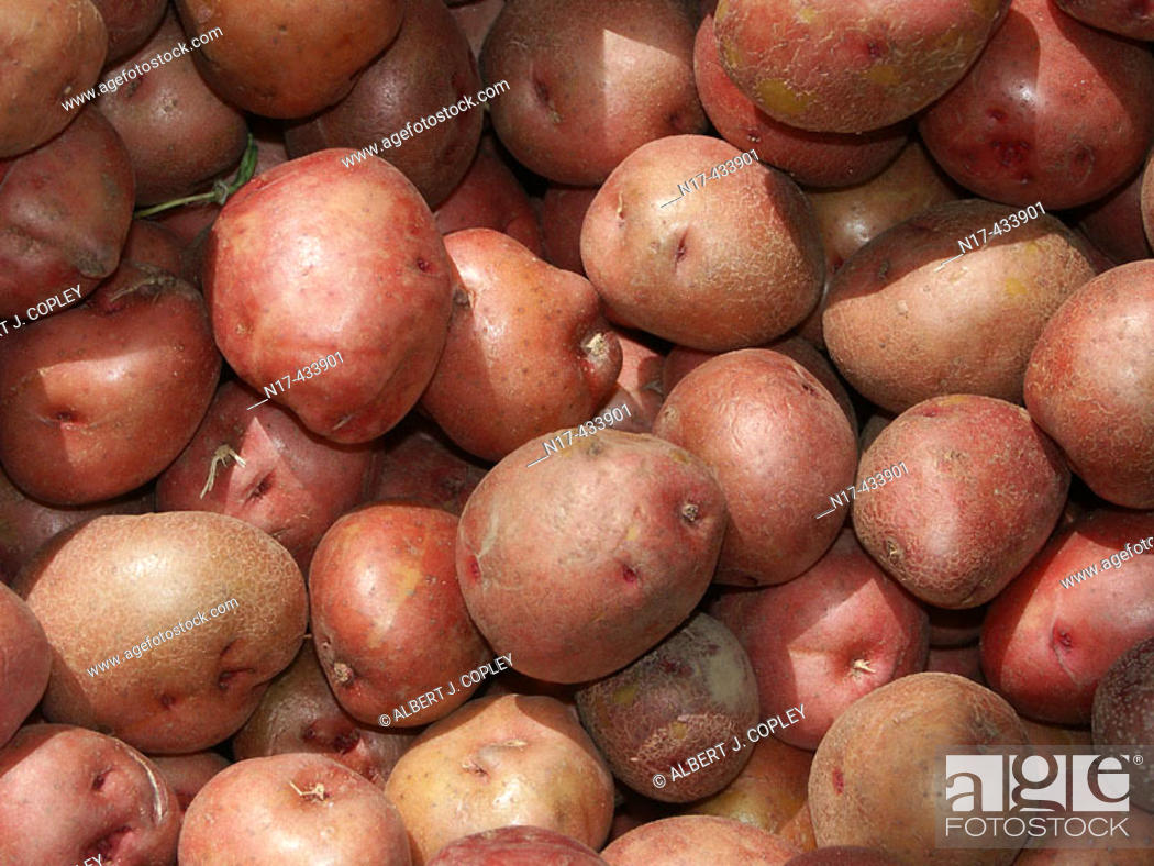 Stock Photo: Close up of potato bin.
