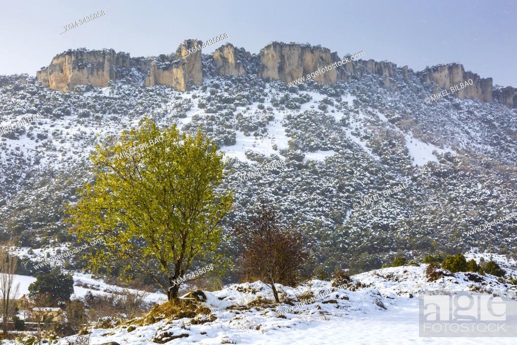 Stock Photo: Loquiz Mountain range in winter. Navarre, Spain, Europe.