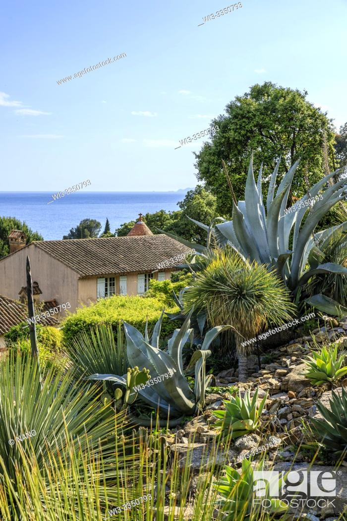 Stock Photo: France, Var, Rayol Canadel sur Mer, the Domaine du Rayol, Mediterranean garden, property of the Conservatoire du littoral.