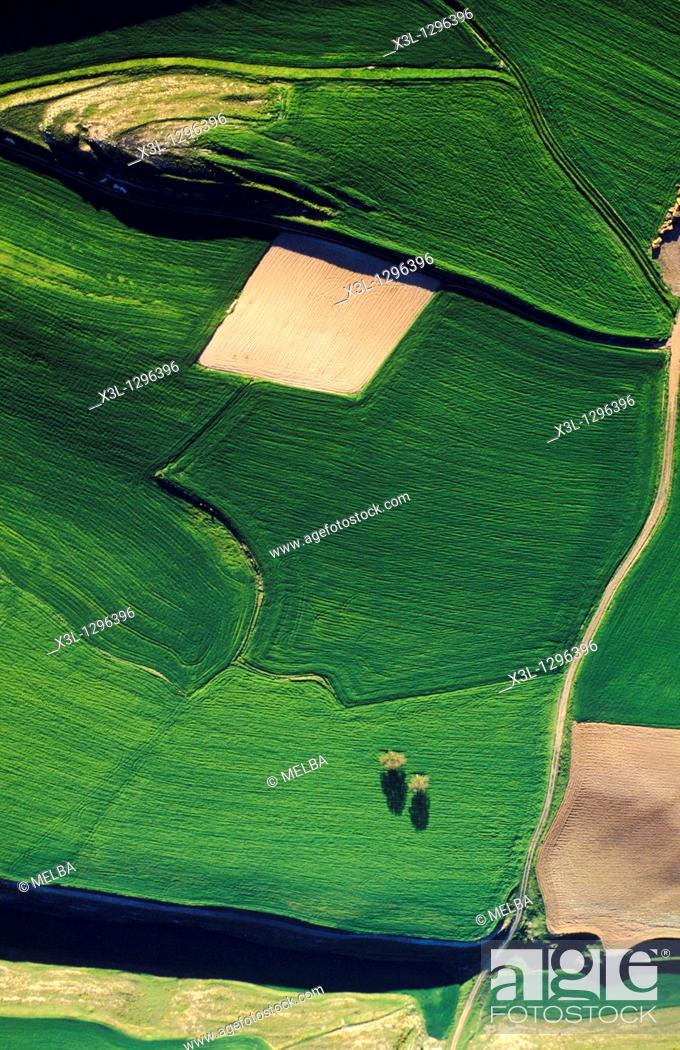 Stock Photo: Farmlands, Bureba Region in the Way of Saint James, Burgos province, Castile-Leon, Spain.