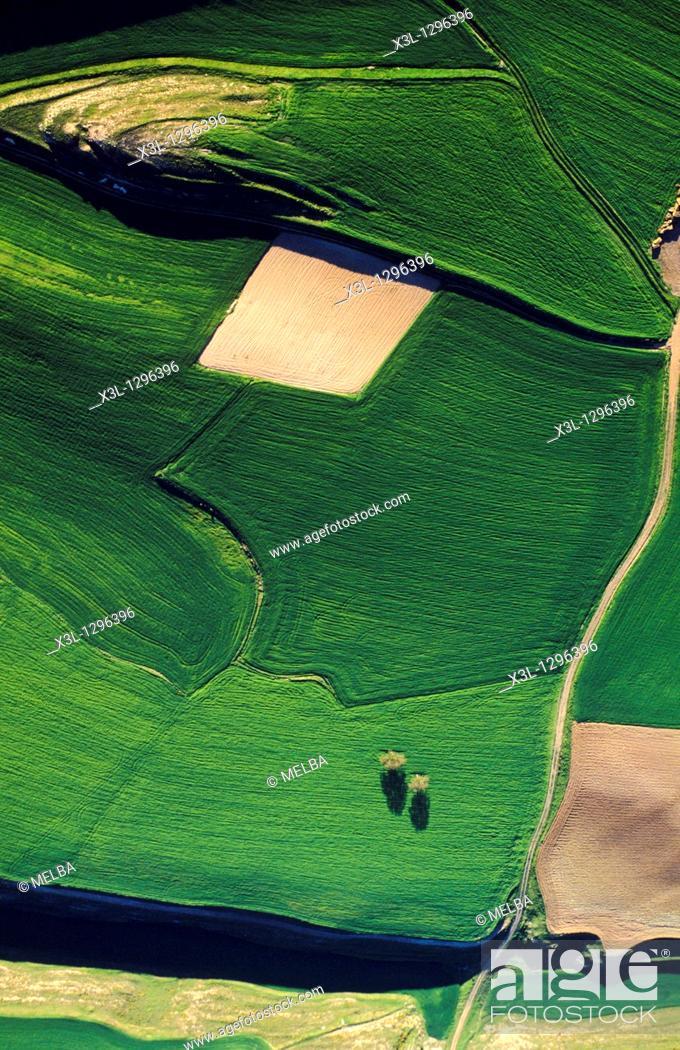 Stock Photo: Farmlands, Bureba Region in the Way of Saint James, Burgos province, Castile-Leon, Spain.
