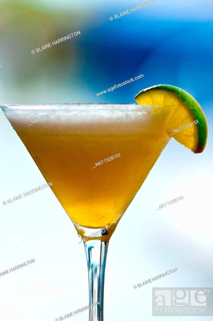 Stock Photo: Margarita, Hogfish Bar & Grill, Stock Island, Key West, Florida Keys, Florida USA.