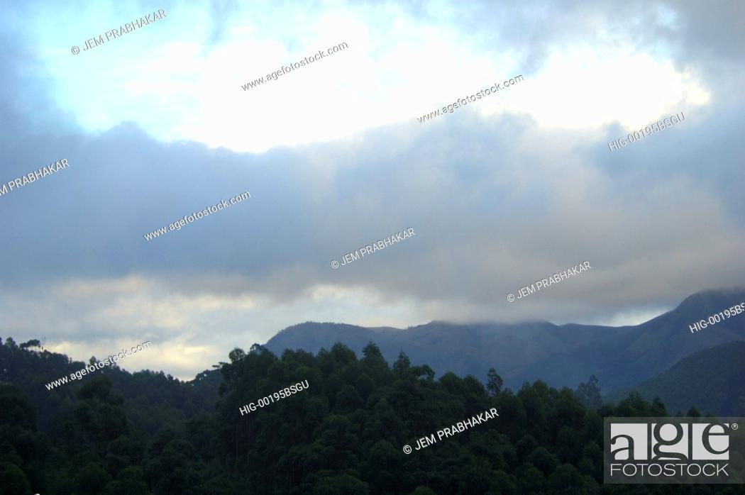 Stock Photo: A VIEW OF WESTERN GHATS IN MUNNAR, KERALA, INDIA.