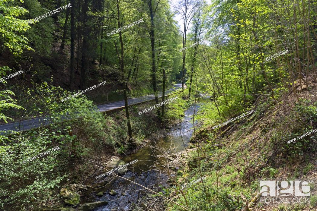 Stock Photo: Europe, Luxembourg, Grevenmacher, Mullerthal, Ernz River near the Schiessentumpel Waterfall.