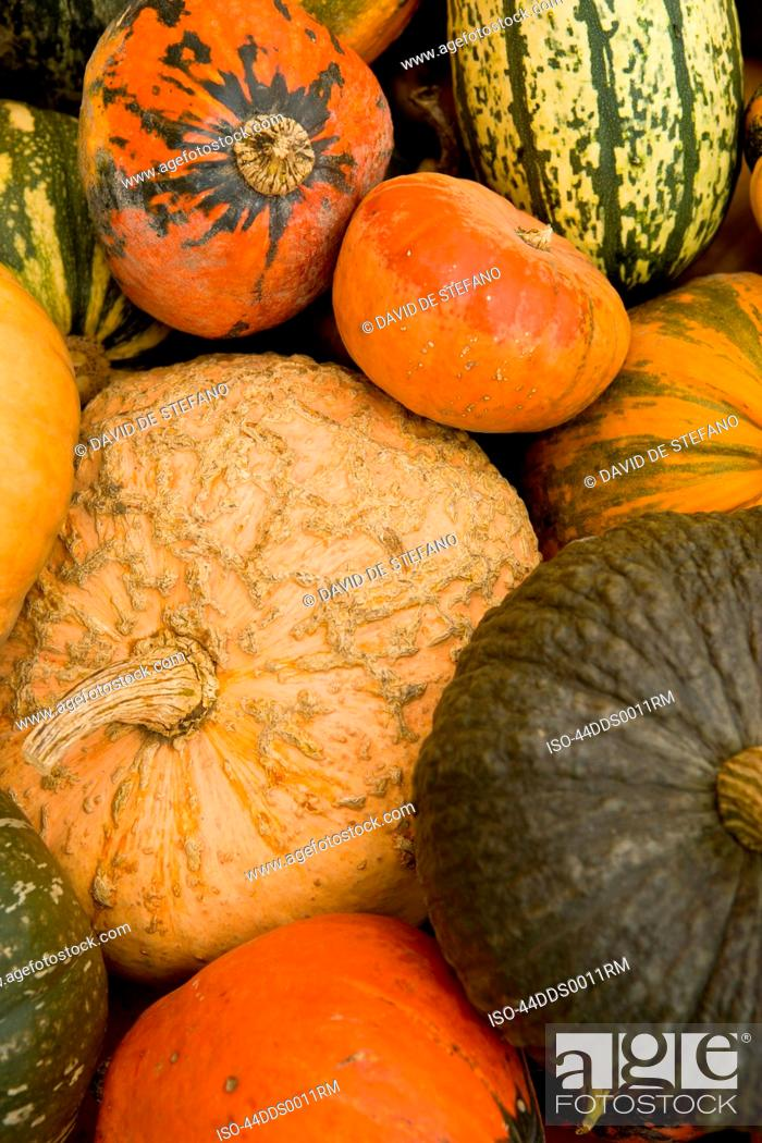 Stock Photo: Close up of pile of gourds.