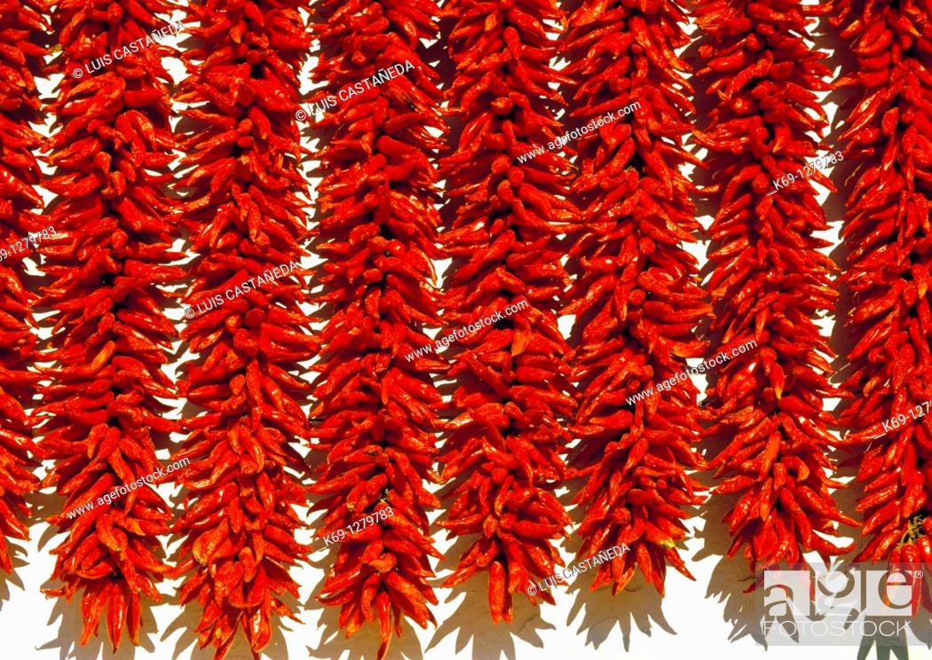 Stock Photo: Wheat FieldDrying Peppers  Navarra  Spain.
