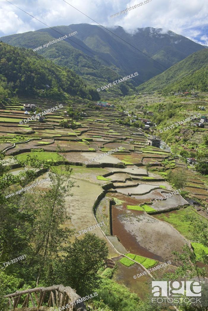Imagen: The beautiful UNESCO rice terraces in Hapao, Banaue, Mountain Province, Philippines.