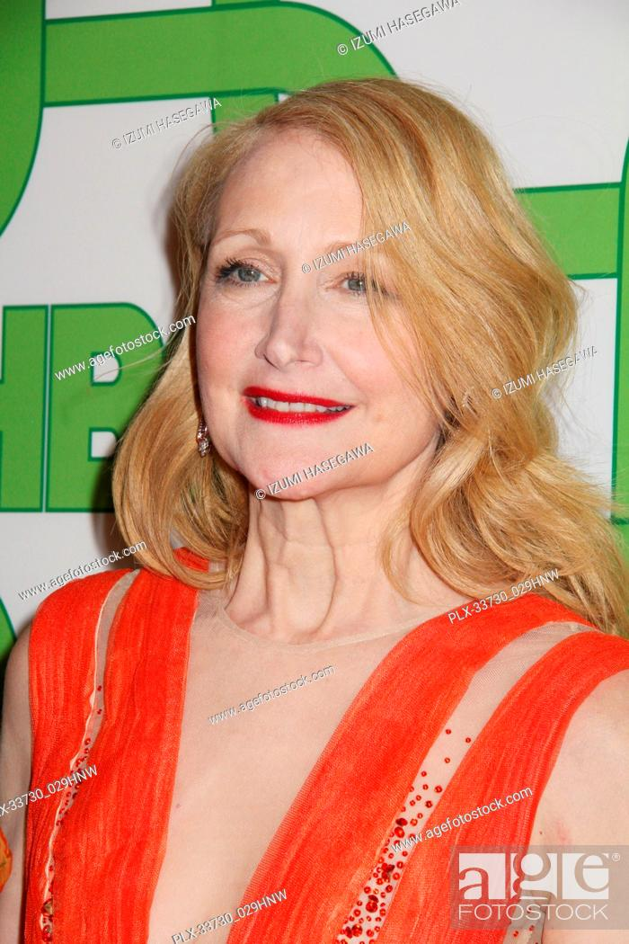 Imagen: Patricia Clarkson 01/06/2019 The 76th Annual Golden Globe Awards HBO After Party held at the Circa 55 Restaurant at The Beverly Hilton in Beverly Hills.