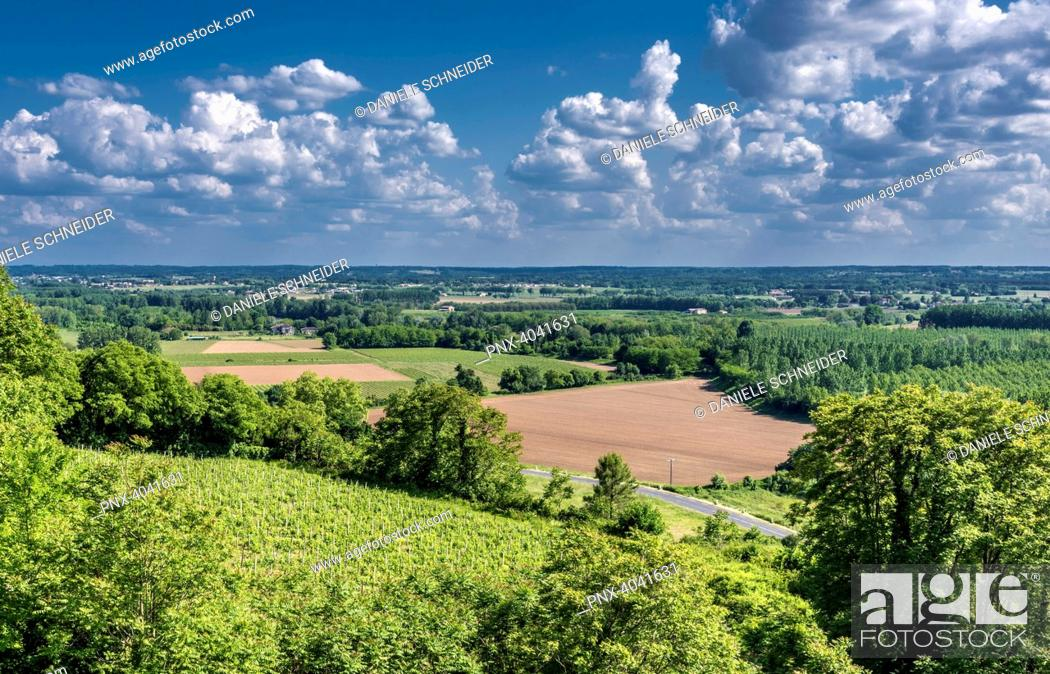 Stock Photo: France, Gironde, Sainte-Croix-du-Mont, countryside of the Garonne valley seen from Tastes castle.